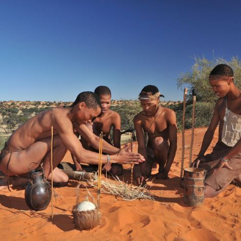 The Kalahari Desert