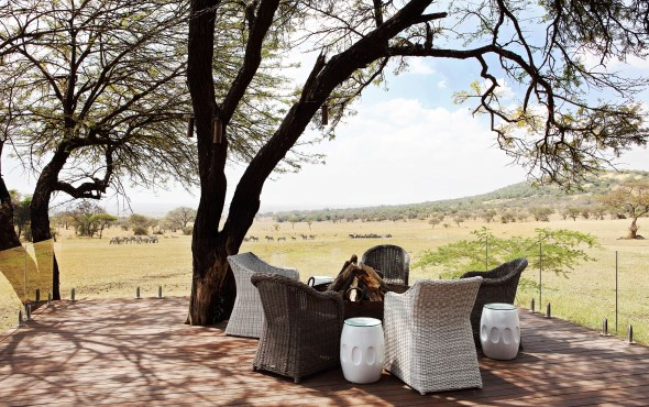 Singita Explore and Serengeti House Special