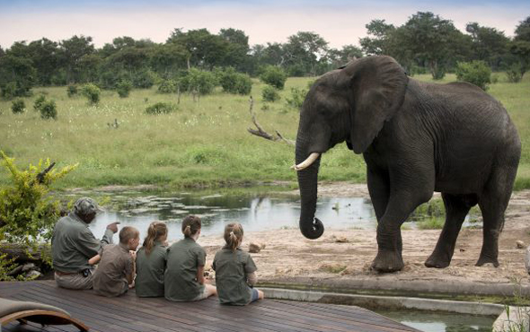 Kids Stay Free at African Bush Camps & Lodges