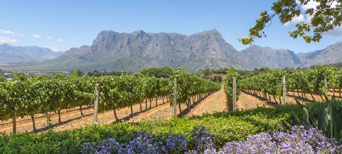 Wonders, Winelands and Waterfalls