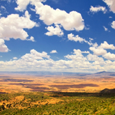 The Laikipia Region, Lewa Conservancy & Mount Kenya