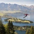 New Ziplining Tour in an Ancient New Zealand Forest